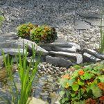 Zbiornik wodny w ogrodzie