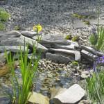 Kwarcyt w zbiorniku wodnym