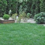Zieleń w ogrodzie