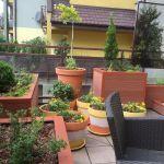 Ogród na tarasie