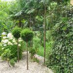 Naszadzenia roślinne w ogrodzie