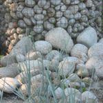 Trawy i kamienie naturalne