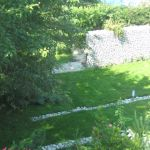 Trawnik w ogrodzie naturalnym