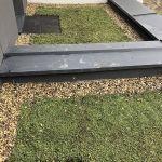 Warstwy zielonego dachu na atrasie